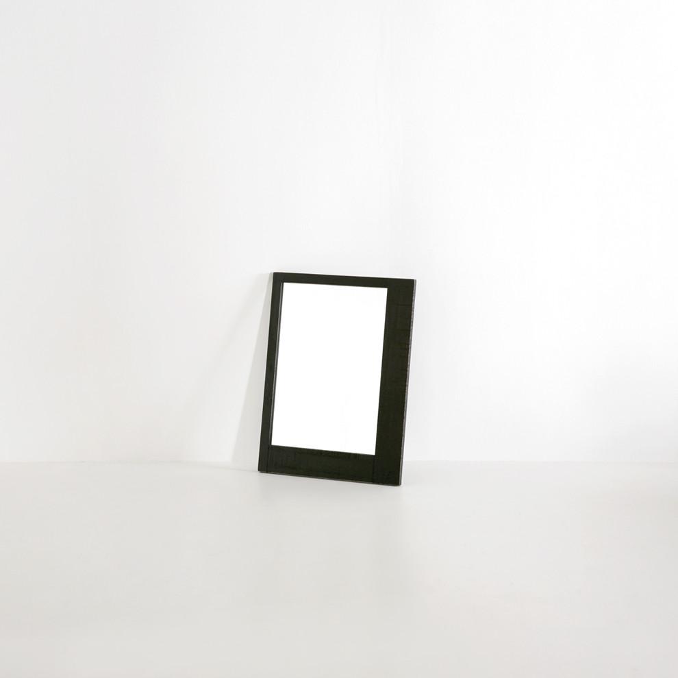나비 거울